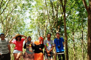 Hutan Karet Tanete