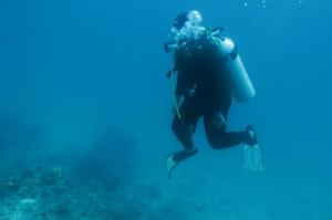satu situs diving berhasil dicontreng lagi. Selayar!