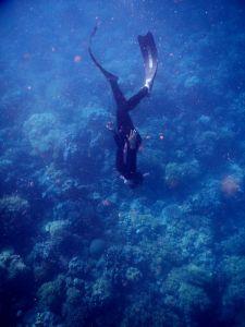 freediving at Riung, Flores
